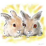 colour animal portraits to buy sheila graber bunny pals