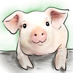 pigcolour animal portraits to buy sheila graber